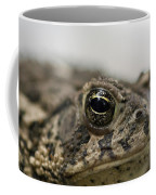 A Close-up Of A Toad Found In Dunbar Coffee Mug