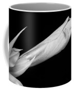 A Close-up Of An Amaryllis Flower About To Bloom Bw Coffee Mug