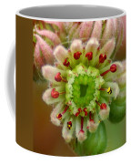 A Closer Look Coffee Mug