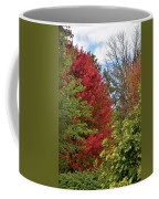 A Collection Of Fall Colours Coffee Mug
