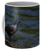 A Common Grackle Coffee Mug