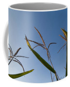 A Corn Field At The Historic Waveland Coffee Mug