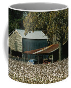 A Cotton Field Surrounds A Small Farm Coffee Mug by Medford Taylor