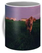 A Cow Walks Near Beachhouses Coffee Mug