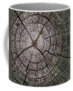 A Cut Above - Patterns Of A Tree Trunk Sliced Across Coffee Mug