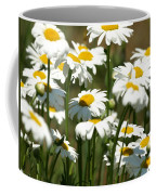 A Daisy A Day Coffee Mug