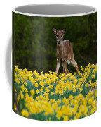 A Deer And Daffodils IIi Coffee Mug