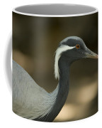 A Demoiselle Crane Anthropoides Virgo Coffee Mug by Joel Sartore