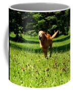 A Dogs Freedom Coffee Mug