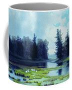A Dreary Day At The Pond Coffee Mug