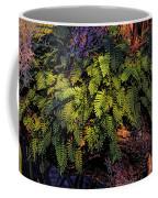 A Fern Botanical By H H Photography Of Florida Coffee Mug