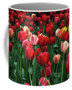 A Field Of Tulips Coffee Mug