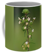 A Flower Tower Coffee Mug