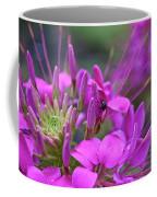 A Fly And A Flower Coffee Mug