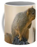 A Fox Squirrel Sciurus Niger Sits Coffee Mug