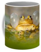 A Frog's Life Coffee Mug