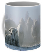 A Frost-covered Herd Of American Bison Coffee Mug by Tom Murphy