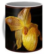 A Golden Slipper Coffee Mug