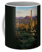 A Golden Sonoran Evening  Coffee Mug