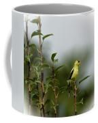 A Goldfinch In A Pear Tree Coffee Mug