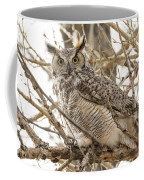 A Great Horned Owl's Wide Eyes Coffee Mug