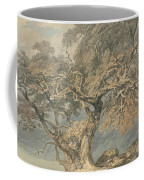 A Great Tree Coffee Mug