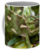 A Green Chamaeleonidae Coffee Mug