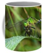 A Green Dragon's Breakfast Coffee Mug