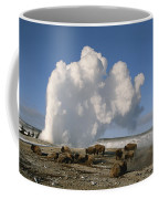 A Group Of American Bison Rest Coffee Mug