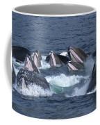 A Group Of Humpback Whales Bubble Net Coffee Mug