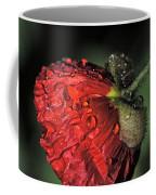 A Hairy Stem Coffee Mug