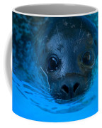 A Harbor Seal At The Lincoln Childrens Coffee Mug