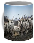 Grey Cattle Herd Coffee Mug