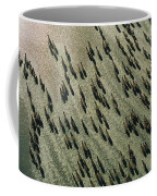 A Herd Of Zebras And A Sole Wildebeest Coffee Mug by Bobby Haas