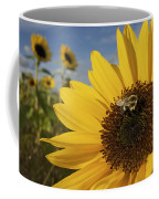 A Honey Bee Visiting A Sunflower Coffee Mug by Tim Laman