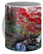 A Japanese Maple With Colorful, Red Coffee Mug by Darlyne A. Murawski