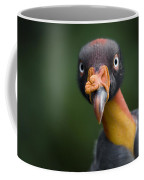 A King Vulture Sarcoramphus Papa Coffee Mug