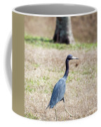 A Little Blue Heron Coffee Mug