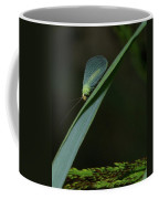 A Little Bug On A Grass Blade  Coffee Mug