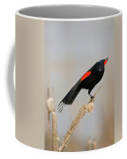 A Little Stretch Coffee Mug