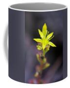 A Little Yellow Star  Coffee Mug