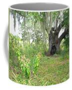 A Live Oak In Purgatory Coffee Mug