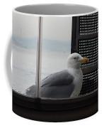 A Looking Seagull Coffee Mug
