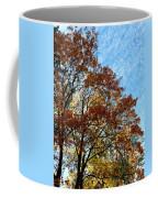 A Magnificent Fall Day Coffee Mug