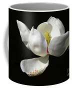 A Magnolia Flower Coffee Mug