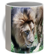 A Male Lion, Panthera Leo, King Of Beasts Coffee Mug