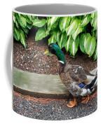 A Male Mallard Duck 4 Coffee Mug