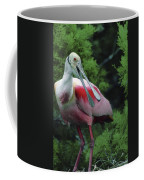 A Male Roseate Spoonbill Is In Breeding Coffee Mug