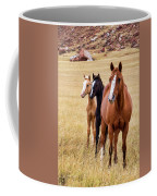 A Mare And Two Friends Coffee Mug