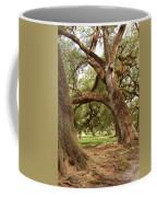 A Maze Of Oak Trees  Coffee Mug